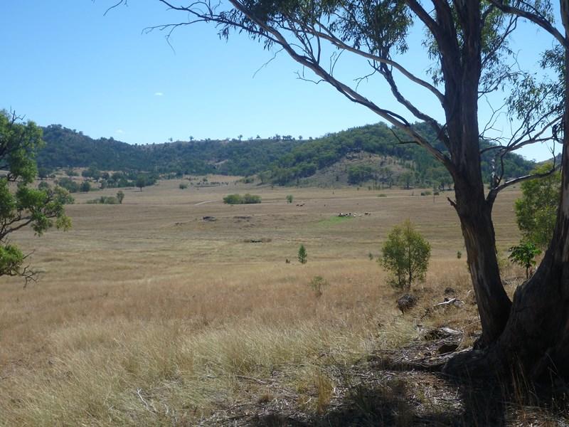 Part Killarney Halls creek Rd MANILLA NSW 2346