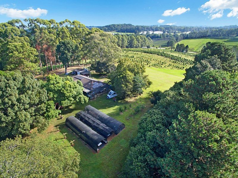 53 McLeans Ridges Road WOLLONGBAR NSW 2477