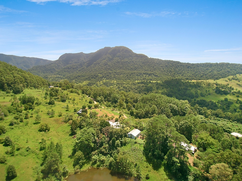 659-675-685 Hopkins Creek Road CHILLINGHAM NSW 2484