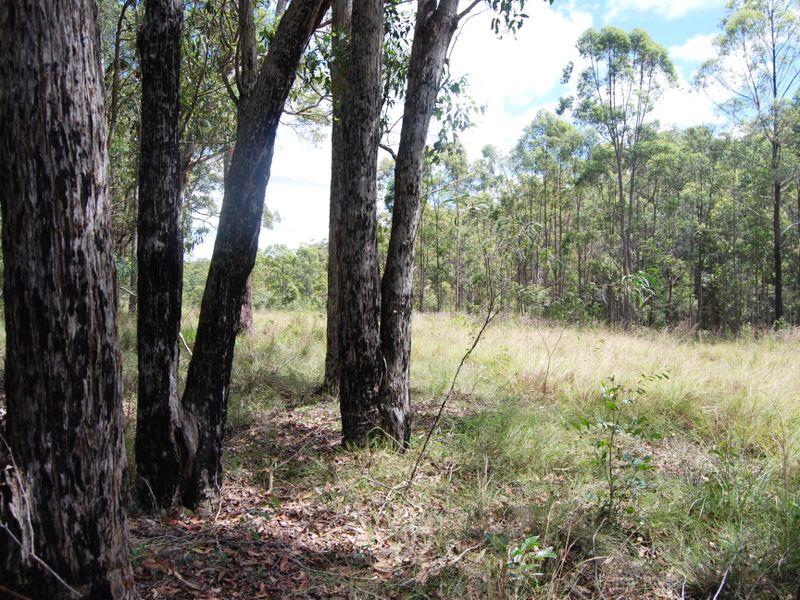 Armidale Road WILLAWARRIN NSW 2440