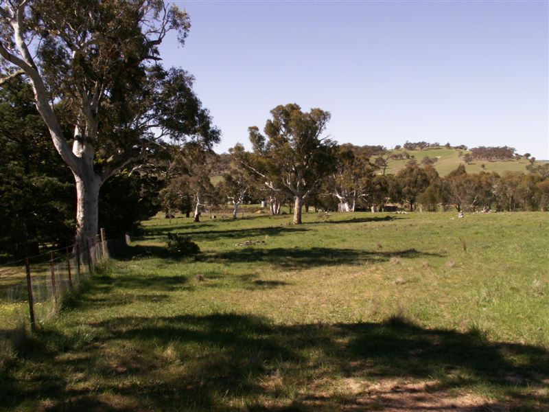 Breadalbane Road GUNNING NSW 2581