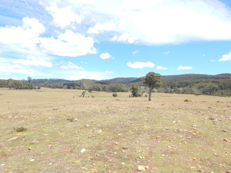 Lot 4 Tuross River KYBEYAN NSW 2631