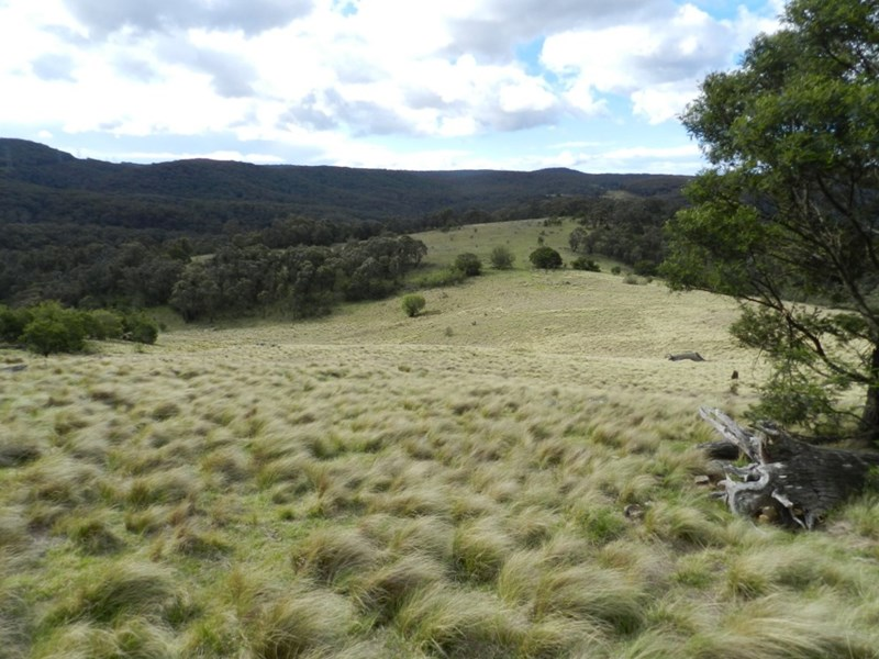 981 Mares Forest Road WOMBEYAN CAVES NSW 2580