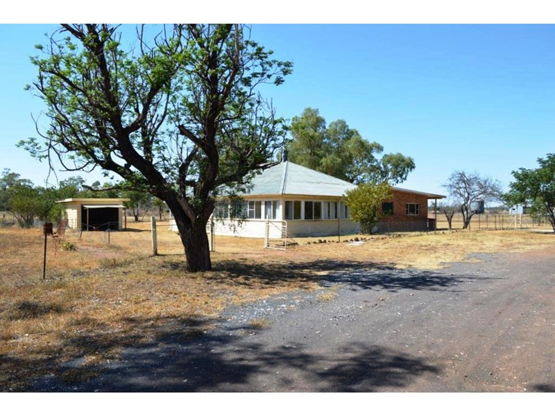 1076 Watermark Road CURLEWIS NSW 2381