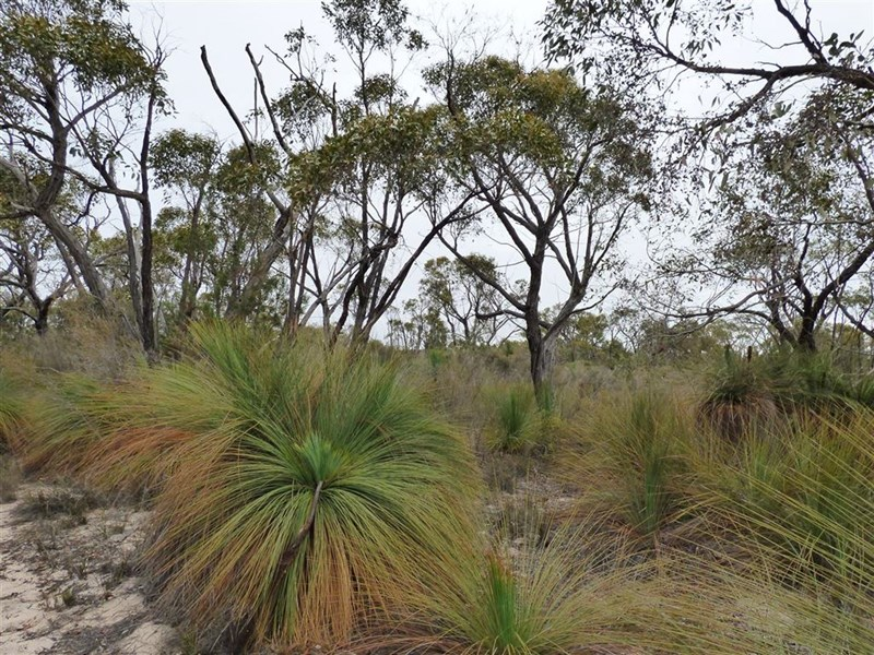 Lot 1 Cooack Road GRASS FLAT VIC 3409