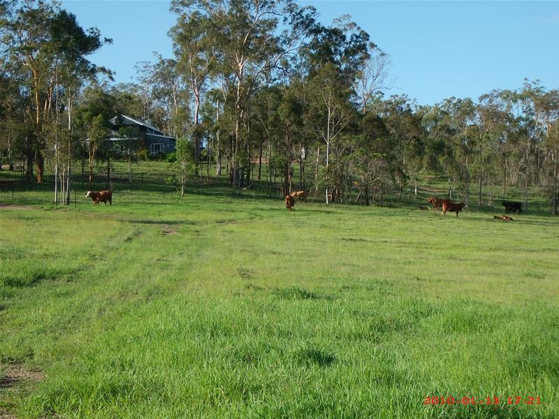 135 East River Pines Drive DELAN QLD 4671