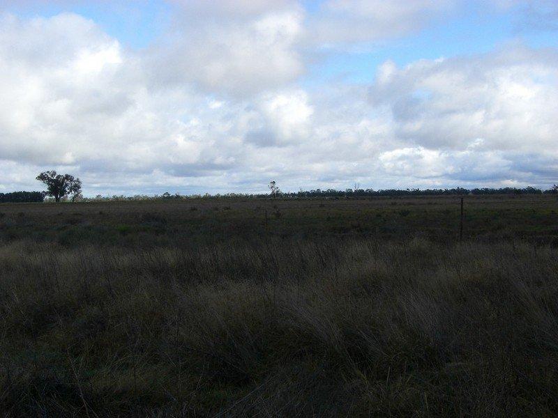 96 Warragoon Road DENILIQUIN NSW 2710