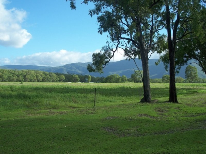 133 East Mary Road MOUNT CARBINE QLD 4871