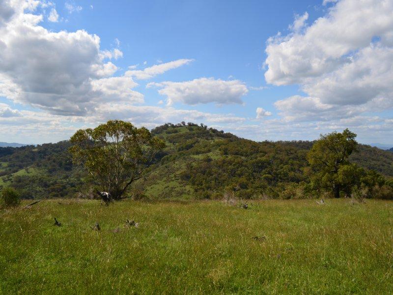 Philips Creek Road WILLOW TREE NSW 2339