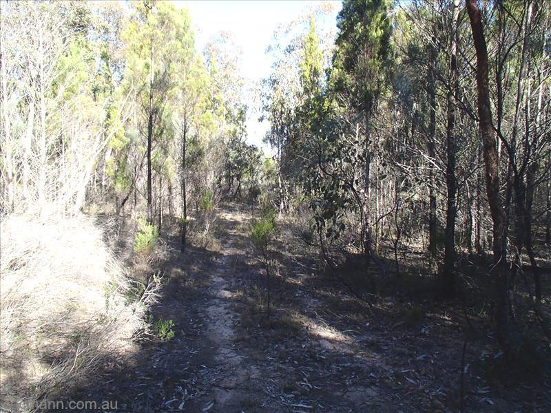 Nundubbermere Road STANTHORPE QLD 4380