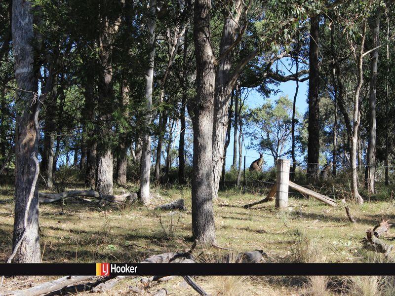 222 Hore Laceys Road QUAAMA NSW 2550