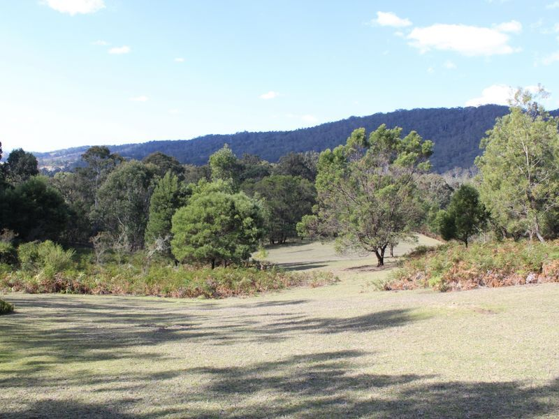 1365 Tantawangalo Mountain Road TANTAWANGALO NSW 2550
