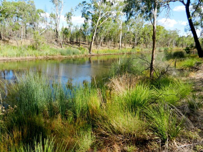 211 Halliford Road Via Dalby DALBY QLD 4405