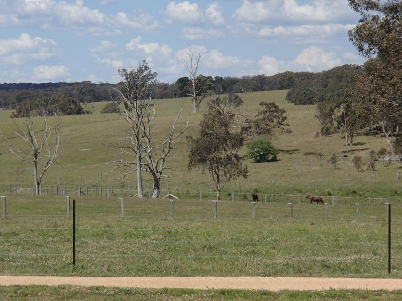 5230 Mt Lindesay Road LISTON NSW 2372