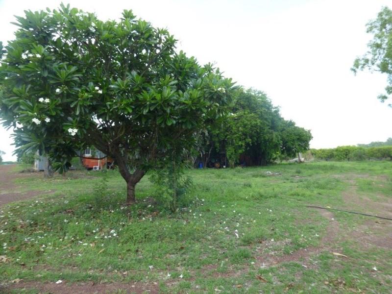 65 Stephen Road MARRAKAI NT 0822