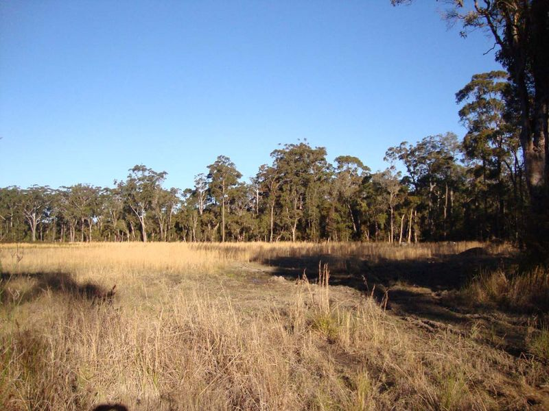 5 Corella Close BERKELEY VALE NSW 2261