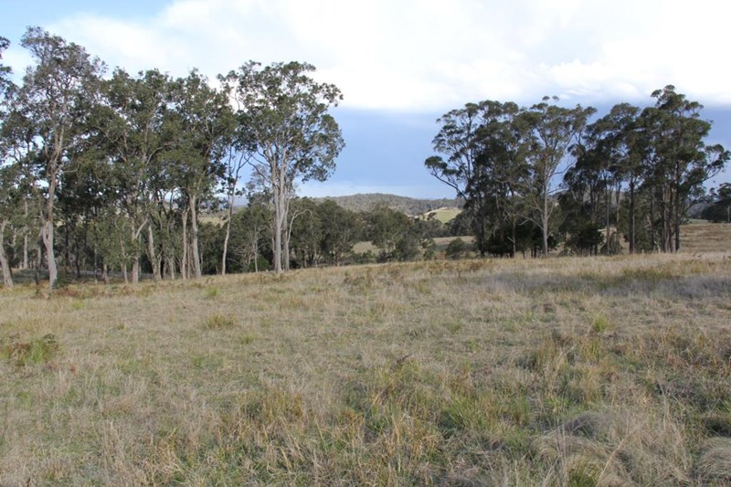 Lot 2 Wellington Lookout Road TENTERFIELD NSW 2372
