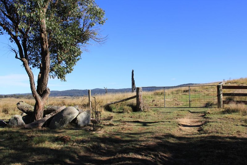 Lot 1 Bruxner Highway TENTERFIELD NSW 2372