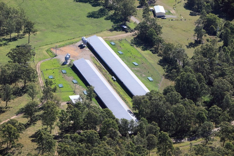 972 Dungog Road HILLDALE NSW 2420