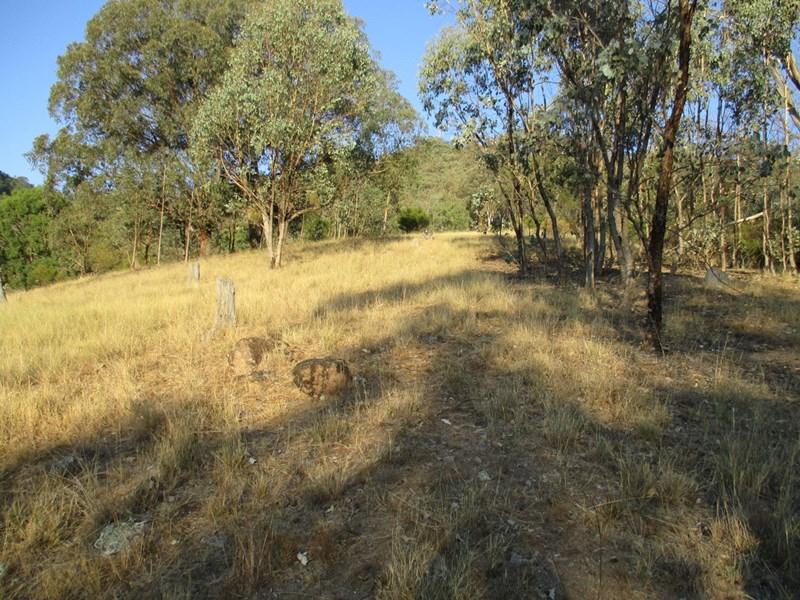 Lot 201 Happy Valley Road NUNDLE NSW 2340
