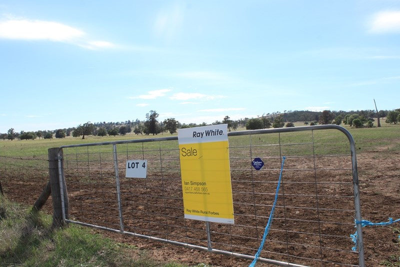 Lot 4 Mount Tallabung Road FORBES NSW 2871