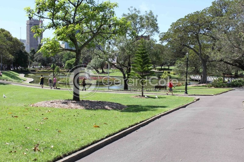 45 Chippen Street CHIPPENDALE NSW 2008