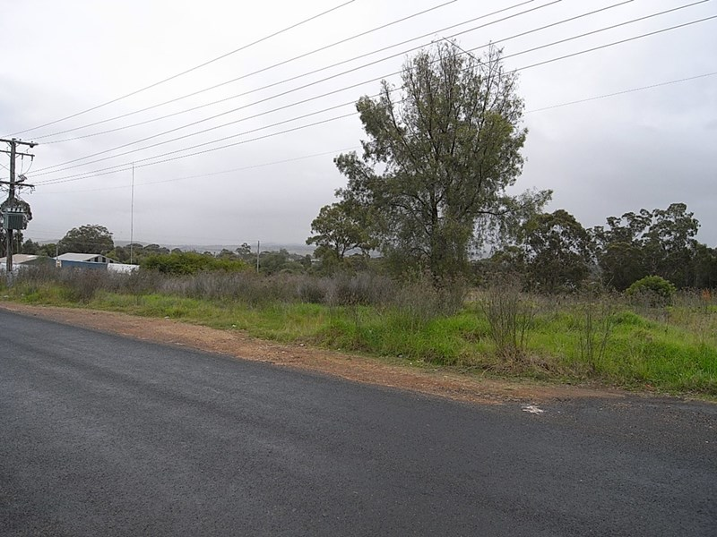 Lot 10 Common Road MUSWELLBROOK NSW 2333