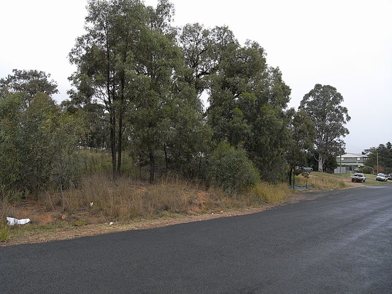 Lot 11 Common Road MUSWELLBROOK NSW 2333
