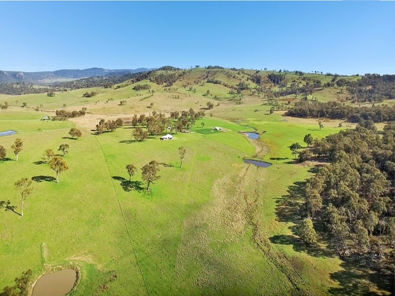 603 Snakes Valley Road TENTERFIELD NSW 2372