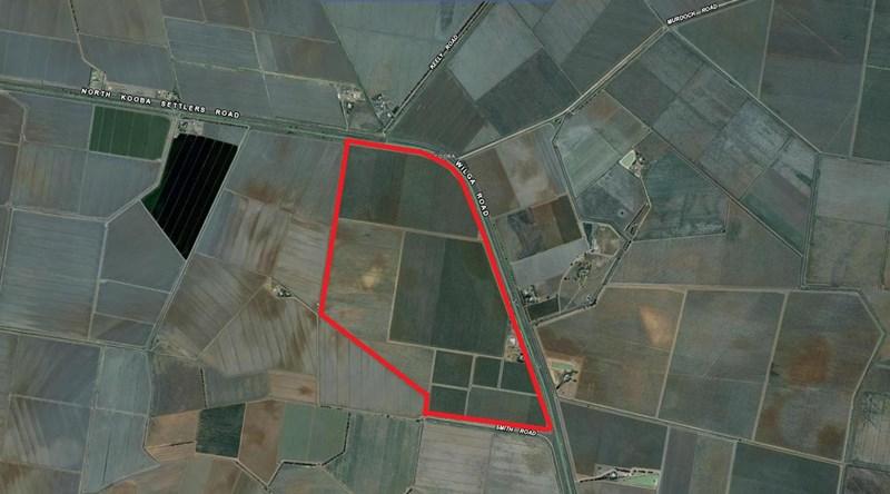 Farm 1955 WILLBRIGGIE NSW 2680