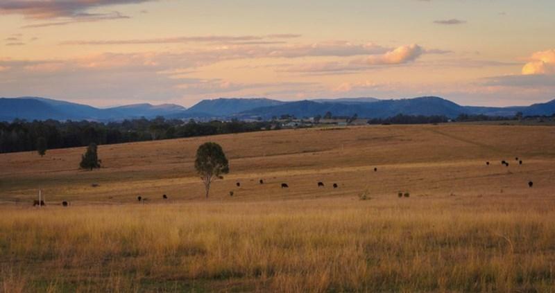 GRETA NSW 2334