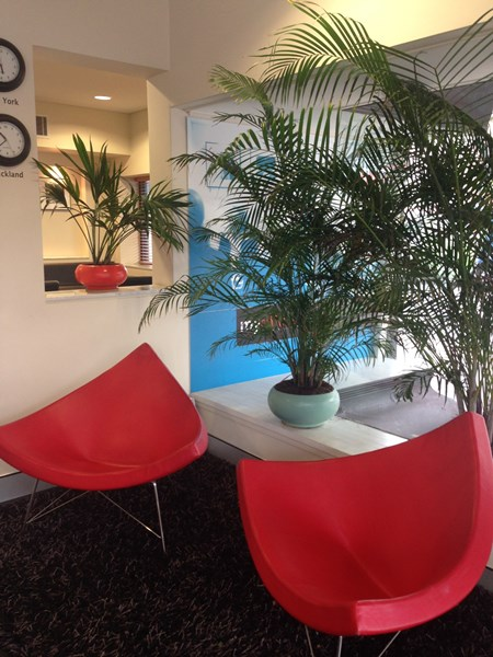 Suite 15/246 Pacific Highway CROWS NEST NSW 2065