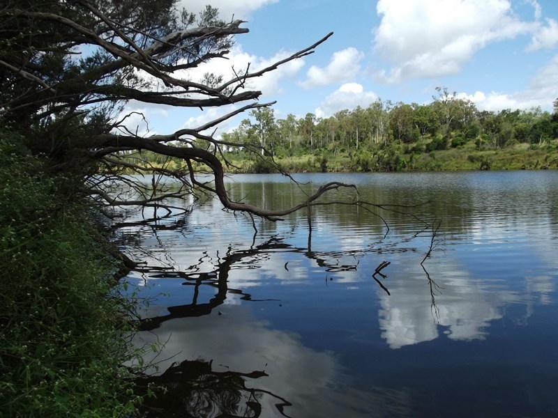L10 Walla Island Road DUINGAL QLD 4671