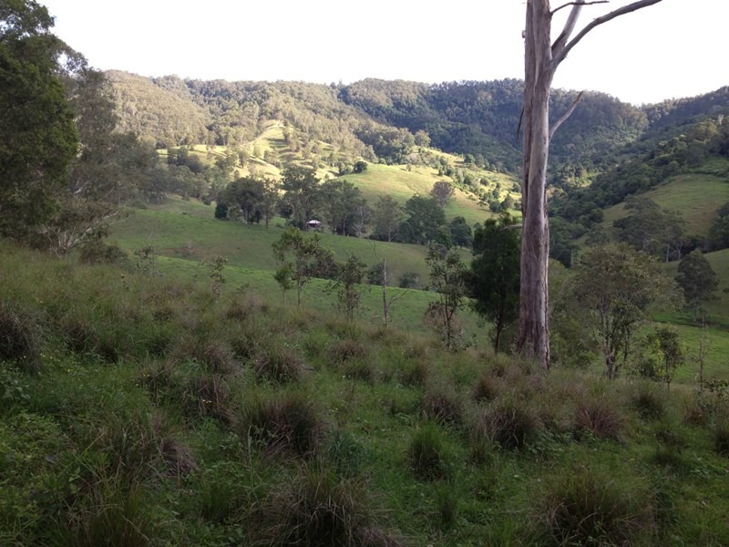 L169 Innes View Road COMBOYNE NSW 2429