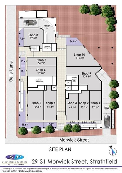 29 Morwick Street STRATHFIELD NSW 2135