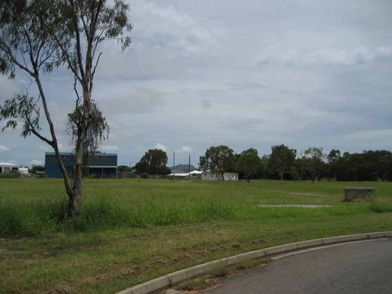 8 McHugh Court MOUNT STUART QLD 4811