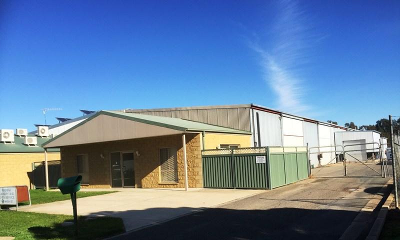 5 Saxon Street WAGGA WAGGA NSW 2650