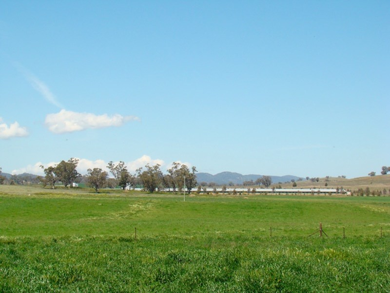 Moana Farm SOMERTON NSW 2340