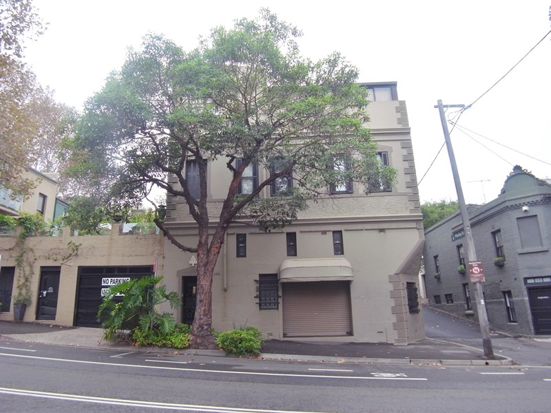 236a Riley Street SURRY HILLS NSW 2010