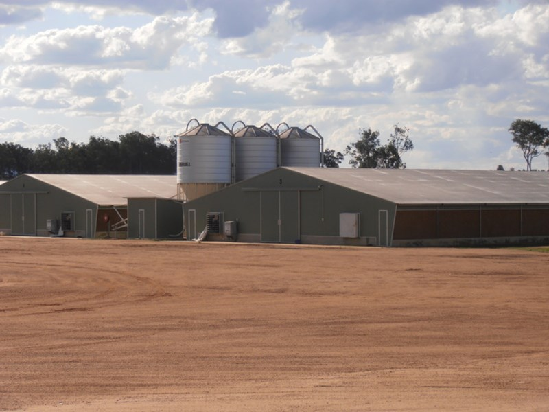 Coominya Poultry Farm COOMINYA QLD 4311