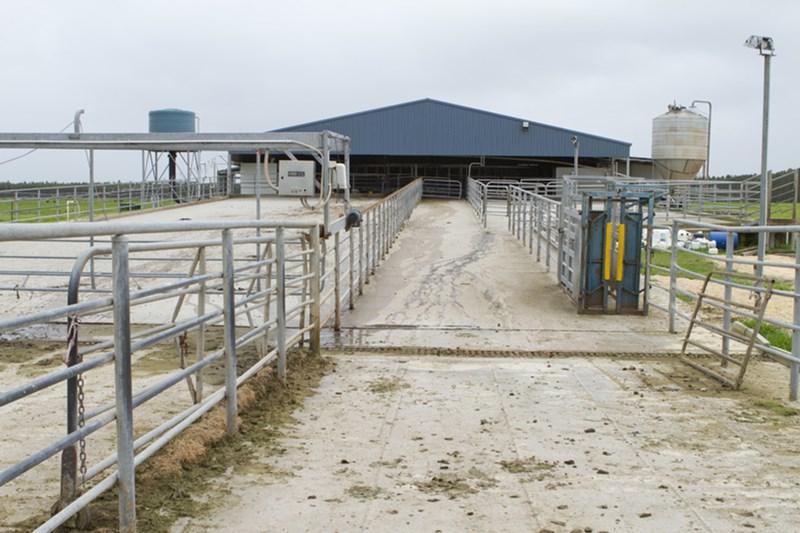 Lactanz/Dairies South-West Western Australia SCOTT RIVER EAST WA 6275