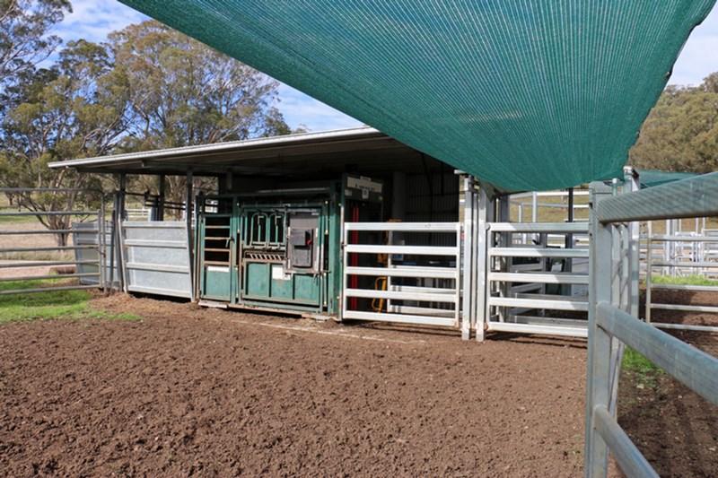 Creswell Park MURRURUNDI NSW 2338