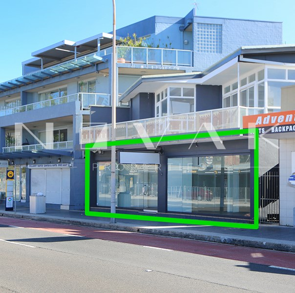 1129 Pittwater Road COLLAROY NSW 2097
