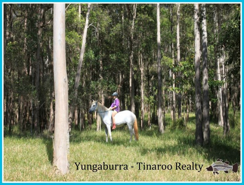 Lot 12 242 Lloyd Road YUNGABURRA QLD 4884